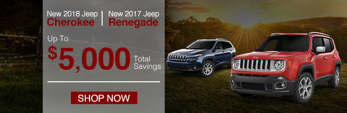 2018 Jeep Cherokee or 2017 Jeep Renegade