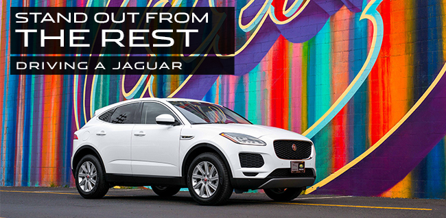 Stand Out From The Rest Driving a Jaguar